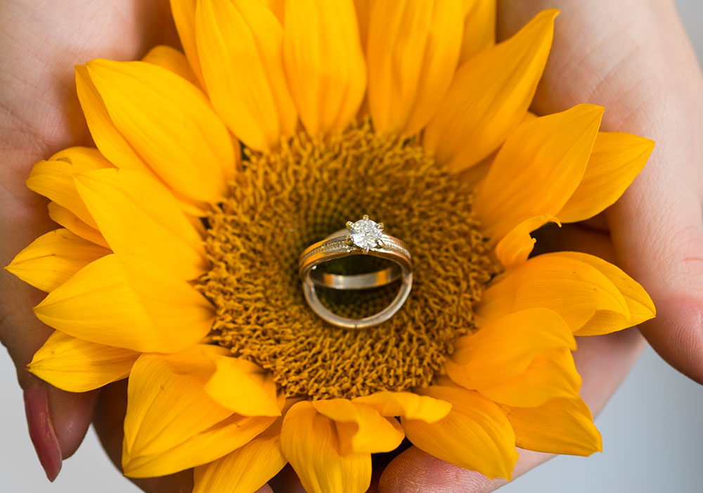 Detailed Shots with Beautiful Wedding Rings