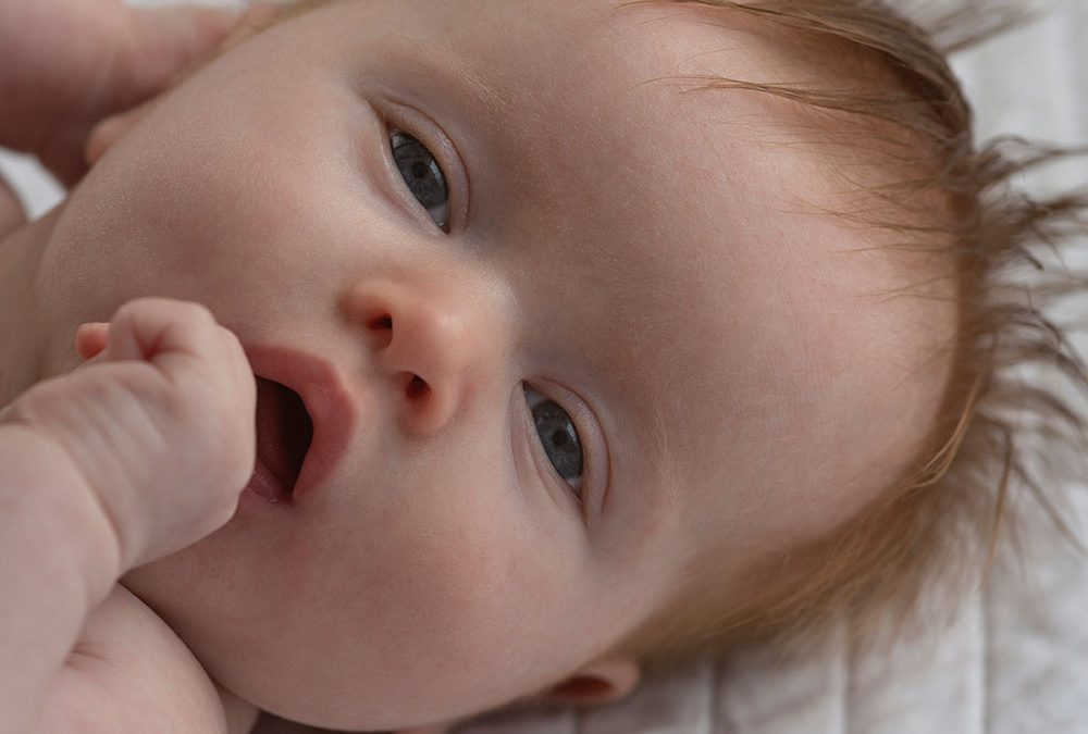 New Unforgettable and Breathtaking Newborn Ginger with Details
